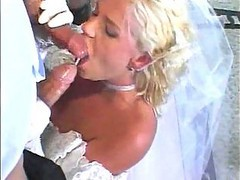 turkish wedding fucking with virgin wife