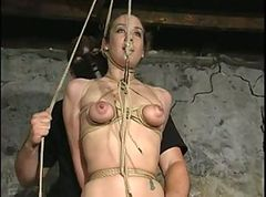 tied up and fucked